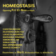 Homeostasis | Heit, Berlin | Opening 22. November 2019